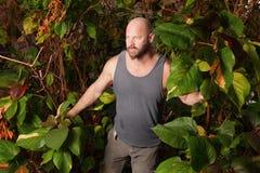 Hombre perdido en las maderas Imagen de archivo libre de regalías