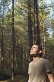Hombre preocupante que mira para arriba en bosque Foto de archivo