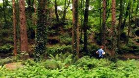 Hombre que activa en el bosque 4k metrajes