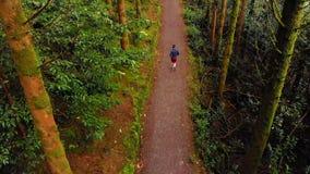 Hombre que activa en un camino en el bosque 4k metrajes