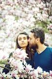 Hombre que besa a la muchacha bonita en los ?rboles florecientes con la magnolia imágenes de archivo libres de regalías