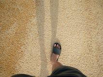 Hombre que camina en la playa en día soleado Feliz, relájese, Vacation Co imagen de archivo libre de regalías
