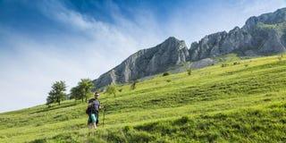 Hombre que camina en montañas verdes Imagen de archivo