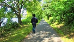 Hombre que camina en naturaleza almacen de metraje de vídeo