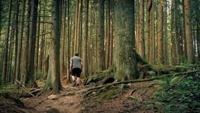 Hombre que camina en Rocky Trail Through Forest