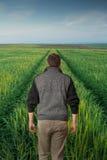 Hombre que camina en un campo verde Fotos de archivo libres de regalías