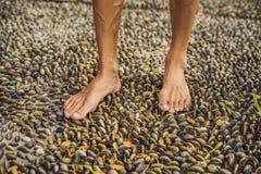 Hombre que camina en un pavimento de adoquín texturizado, Reflexology Guijarro s Fotografía de archivo