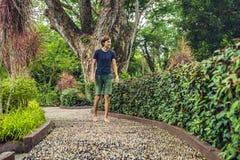 Hombre que camina en un pavimento de adoquín texturizado, Reflexology Guijarro s Imagen de archivo