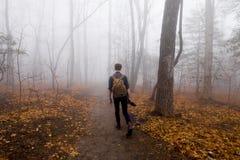 Hombre que camina solamente en bosque de niebla Foto de archivo