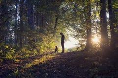 Hombre que camina su perro en el bosque Imagenes de archivo