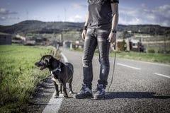 Hombre que camina su perro en el camino Imagenes de archivo