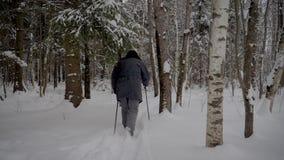 Hombre que camina a través de la nieve en bosque nevado con emigrar polos en invierno metrajes