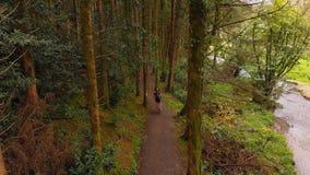 Hombre que completa un ciclo en un camino en el bosque 4k almacen de video