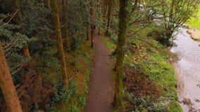 Hombre que completa un ciclo en un camino en el bosque 4k almacen de metraje de vídeo