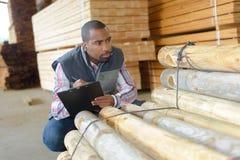 Hombre que comprueba los registros de madera Fotografía de archivo libre de regalías