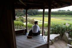 Hombre que comtempla la belleza del jardín de Korakuen Foto de archivo
