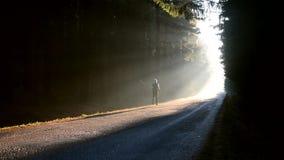 Hombre que corre en la salida del sol en el bosque de niebla almacen de metraje de vídeo