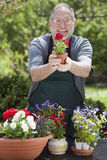 Hombre que cultiva un huerto al aire libre Imagen de archivo libre de regalías