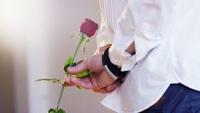 Hombre que detiene a una Rose roja en su mano Foto de archivo libre de regalías
