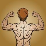 Hombre que dobla los músculos posteriores libre illustration