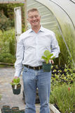 Hombre que elige las plantas en el centro de jardín Imágenes de archivo libres de regalías