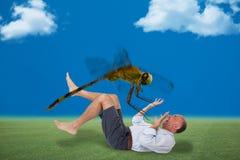 Hombre que es atacado por una mosca del dragón Imágenes de archivo libres de regalías