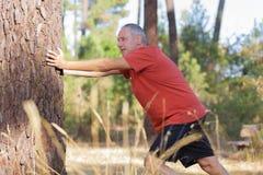 Hombre que estira los brazos en la madera Fotos de archivo libres de regalías