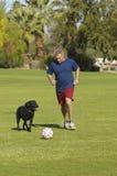 Hombre que juega a fútbol con el perro en el parque Foto de archivo libre de regalías