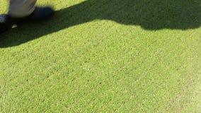 Hombre que juega a golf en la hierba verde almacen de video