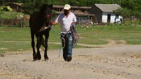 Hombre que lleva su caballo abajo de una carretera nacional almacen de metraje de vídeo