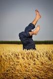Hombre que miente en campo de trigo Fotografía de archivo