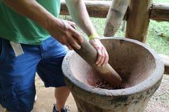 Hombre que pone a tierra granos de cacao en un mortero Foto de archivo