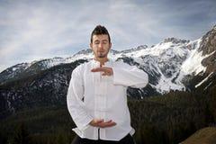 Hombre que practica artes marciales Fotos de archivo libres de regalías