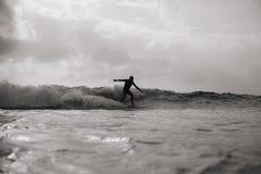 Hombre que practica surf en las ondas monocromáticas Fotos de archivo libres de regalías