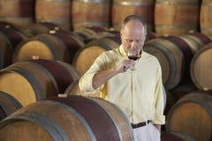 Hombre que prueba el vino rojo rodeado por el barril en sótano Foto de archivo libre de regalías