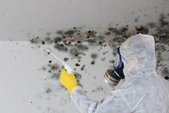 Hombre que quita el hongo de molde con la máscara del respirador imagenes de archivo