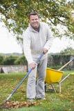 Hombre que rastrilla las hojas en jardín Imagen de archivo