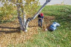 Hombre que rastrilla las hojas en su yarda Imágenes de archivo libres de regalías