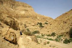 Hombre que recorre en landscap del desierto Imágenes de archivo libres de regalías