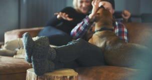 Hombre que se divierte con el perro en casa metrajes