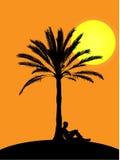 Hombre que se sienta en la palmera en puesta del sol Foto de archivo libre de regalías