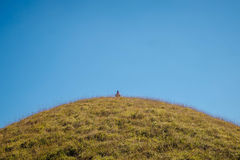Hombre que sienta el prado de la montaña de n fotografía de archivo libre de regalías
