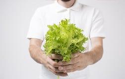 Hombre que sostiene ascendente cercano de las ensaladas Concepto Superfoods Imagen de archivo