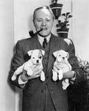 Hombre que sostiene dos perritos ingleses del dogo (todas las personas representadas no son vivas más largo y ningún estado exist foto de archivo