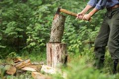 Hombre que taja la madera en el bosque Fotografía de archivo