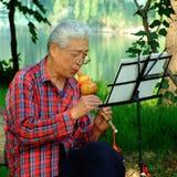 Hombre que toca la flauta de la cucúrbita Foto de archivo libre de regalías