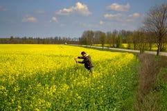 Hombre que toma imágenes en campos de flores amarillos Foto de archivo libre de regalías