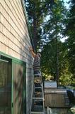 Hombre que trabaja en casa Imagen de archivo libre de regalías