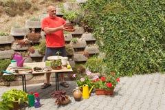 Hombre que trabaja en jardín El jardinero compensa las flores Imagen de archivo libre de regalías