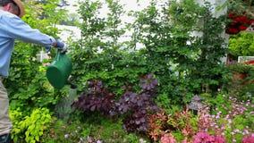 Hombre que trabaja en su jardín almacen de video